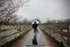 Umbrella Exit